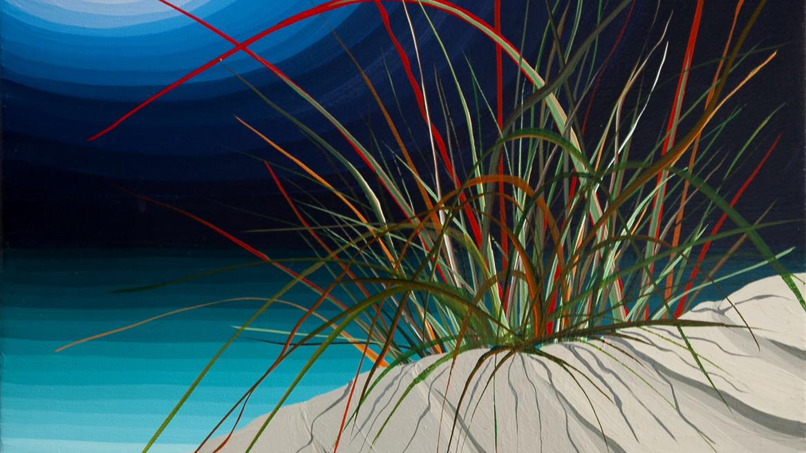 Dune Grass Friendly Beach